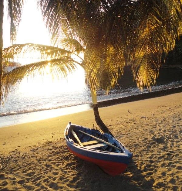 plage ombragée des grenadines
